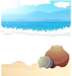 Tropical beach with seashells vector