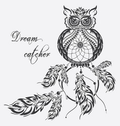 dream catcher owl white background vector image