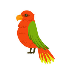 Beautiful red parrot with green wings colorful vector