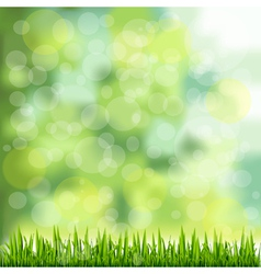 Grass border on natural green background vector