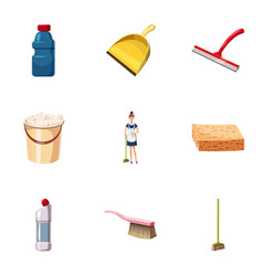 cleaning equipment icons set cartoon style vector image vector image
