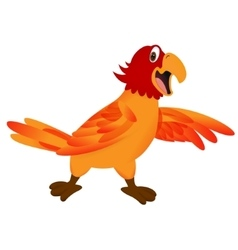 funny cartoon parrot vector image vector image