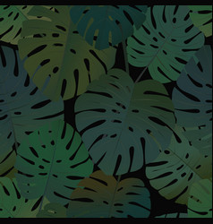 tropical palm monstera leaves seamless pattern vector image