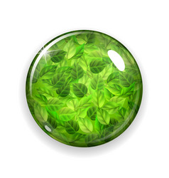Glass button or sphere with green leaves vector