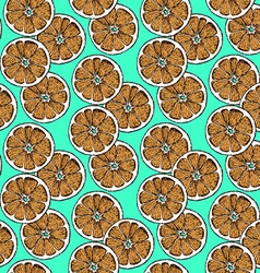 Sketch dry citrus in vintage style vector