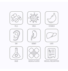 Pills medical plaster and prescription icons vector