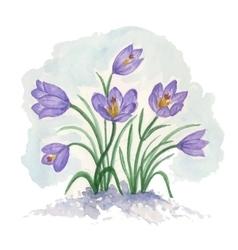 Spring bouquet of flowers crocuses vector image
