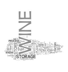 Best wine storage practices text word cloud vector