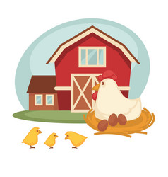 farm barn or farmer household chicken hatch vector image vector image