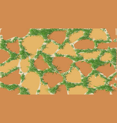 the pattern of masonry with green grass vector image