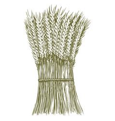 Woodcut wheat stack vector