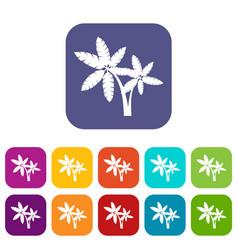 Palma icons set vector