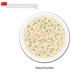 Chinese fried rice a famous dish in china vector