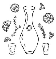 decanter for wine oil or water sketch with citrus vector image vector image