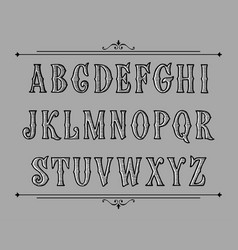 hand drawn label font for design in vintage style vector image
