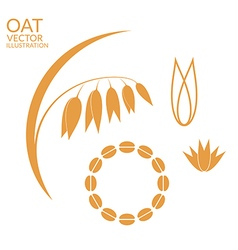 Oat set vector