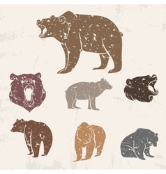 Set of different bears vector image vector image