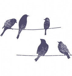 wire birds vector image