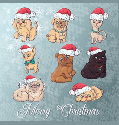 Dog and cat in christmas hat cartoon new vector