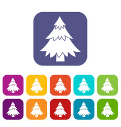 coniferous tree icons set vector image