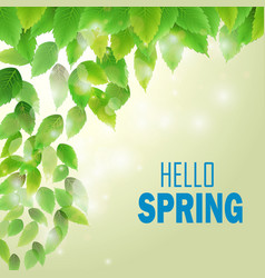 Spring branch with fresh green leaves vector
