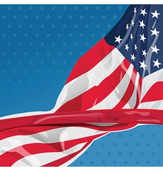 USA flag in the wind vector image vector image