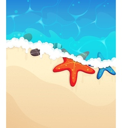 Tropical beach with starfish vector