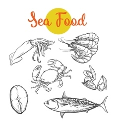 Isolated set of fresh marine products vector image