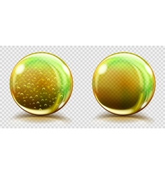 Two big yellow glass spheres vector
