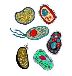 Amebas amoebas microbes and germs set vector