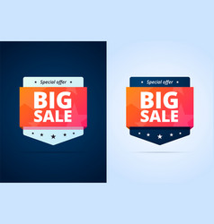 Big sale badges vector