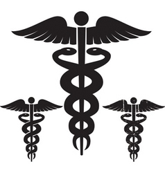 caduceus medical signs set vector image