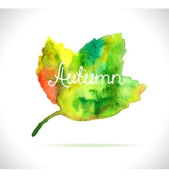 Watercolor leaf design element vector image vector image