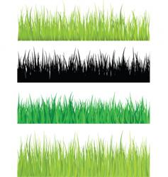 detailed grass vector image