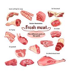 natural cutting pork meat parts set vector image