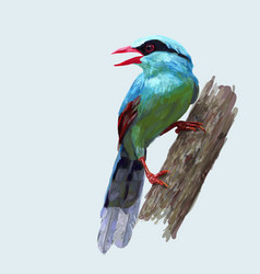 Drawing and coloring of common green magpie bird vector