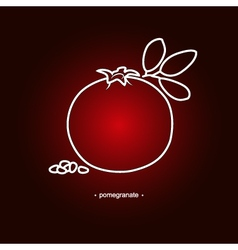 Image pomegranate in the contours vector