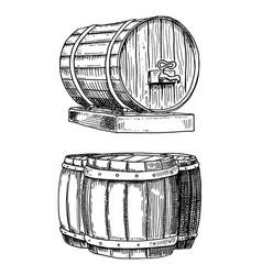 wine or rum beer classical wooden barrels for vector image