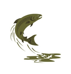 Trout fish retro vector