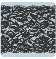 black lace vector image