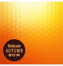 Autumn Sun Triangle Background vector image
