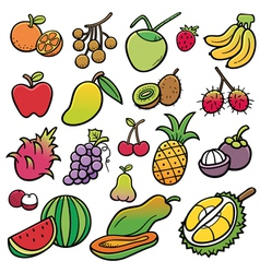 Fruit vector
