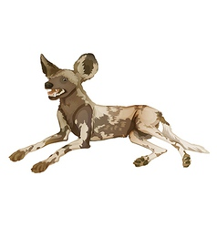 African wild dog vector image vector image