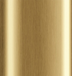 gold brushed metal 1401 vector image vector image