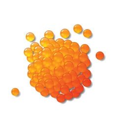 red caviar vector image vector image