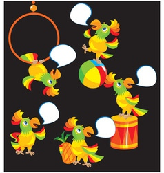 Set of parrot cartoons vector image