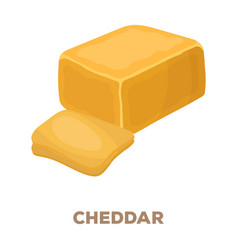 cheddardifferent kinds of cheese single icon in vector image