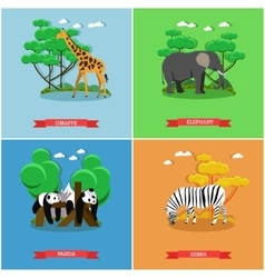 Zoo concept banner wildlife animals vector
