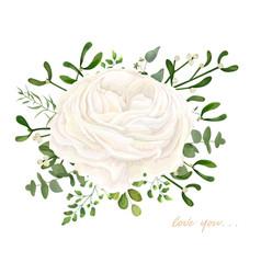 Floral bouquet design white ranunculus flower vector
