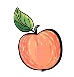 Hand drawn red apple with a leaf vector image